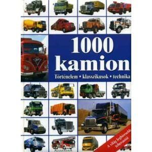 1000 kamion