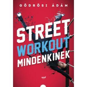Street workout mindenkinek     Gödrösi Ádám